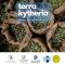 Μεγάλη συμμετοχή των ελαιοπαραγωγών στην ενημερωτική συνάντηση του προγράμματος Terra Kytheria